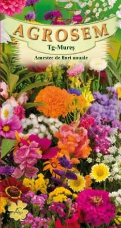Amestec flori anuale  mix  Summer Flowers Semitall Mix