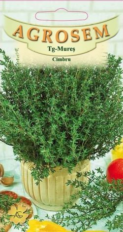 Cimbru Satureja Hortensis